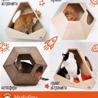 12 апреля и день кото-космонавтов на нашем сайте)