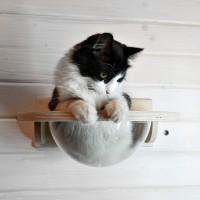 """Долгожанная версия гамака для кошек """"Тоумей мини"""""""
