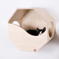 """""""Октай""""-- наш новый настенный чудо-домик для кошки!"""