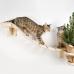 """Надежный, экологичный мостик лесенка для кошек """"Дорога к дому"""""""
