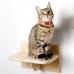 Комплект лесенок полок для кошек