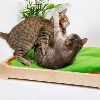 """Лежанка для кошек и собак """"Сладкий сон"""""""