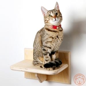 """Полочка-ступенька для кошек """"Фитнес каждый день"""""""