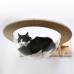 Гамак с прозрачной лежанкой для кошек «Тоумей»