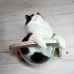 Гамак с прозрачной лежанкой для кошек «Тоумей мини»